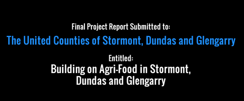 Final Report Submitted on SDG's Agri-Food Initiative